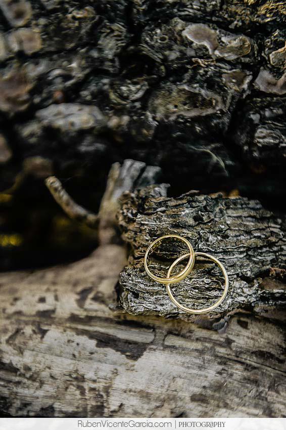 @ rubenvicentegarcia.com anillos bodas 2014 alba de tormes. Ruben Vicente Garcia,